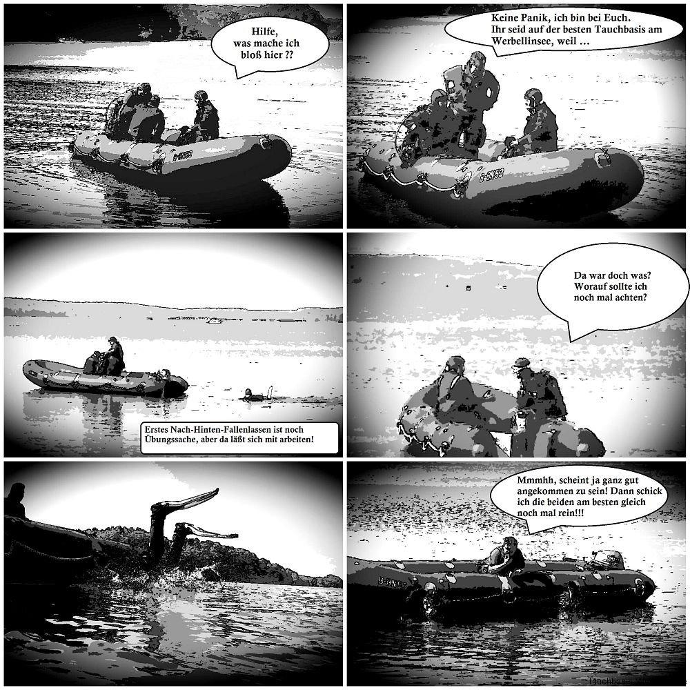 Tauchen vom Boot (1)