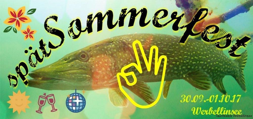 banner_sommerfest17